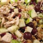 Ensalada-Waldorf-pollo-mejores-opciones_CLAIMA20140102_0132_17
