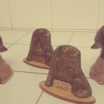 premios rio de los pájaros los 4