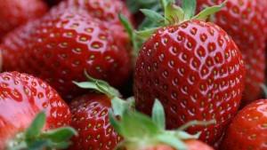 primavera-frutillas-preciados-incluidos-alimentario_CLAIMA20150921_0050_28