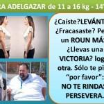 PARA ADELGAZAR DE 11 A 16 kg. -  14° día