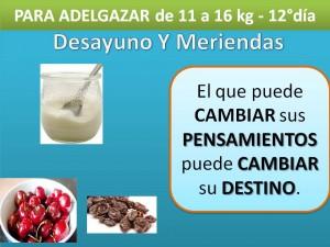 PARA ADELGAZAR DE 11 A 16 kg. -DESAYUNO MERIENDA- 12° día