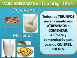PARA ADELGAZAR DE 11 A 16 kg. -DESAYUNO MERIENDA- 13° día
