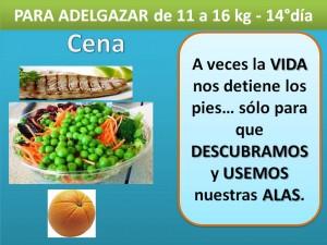 PARA ADELGAZAR DE 11 A 16 kg. -cena- 14° día